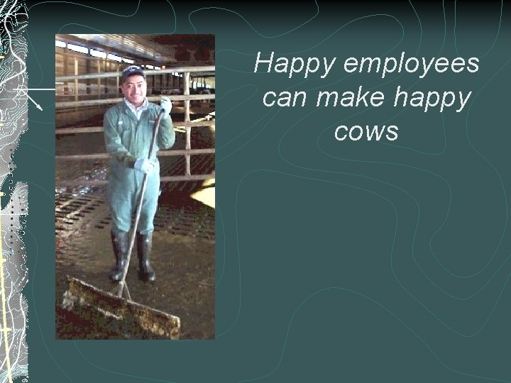 Happy employees can make happy cows
