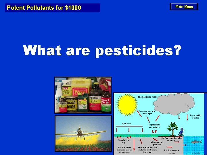 Potent Pollutants for $1000 Main Menu What are pesticides?