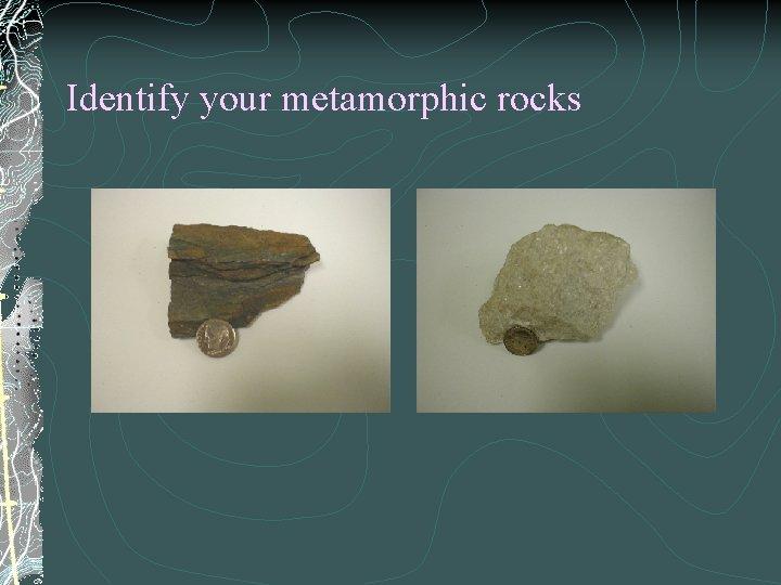 Identify your metamorphic rocks