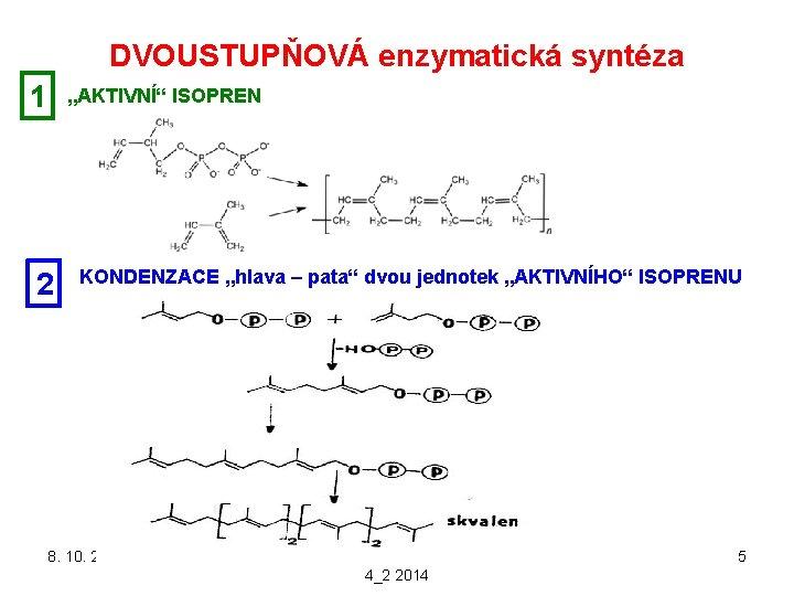"""DVOUSTUPŇOVÁ enzymatická syntéza 1 """"AKTIVNÍ"""" ISOPREN 2 KONDENZACE """"hlava – pata"""" dvou jednotek """"AKTIVNÍHO"""""""