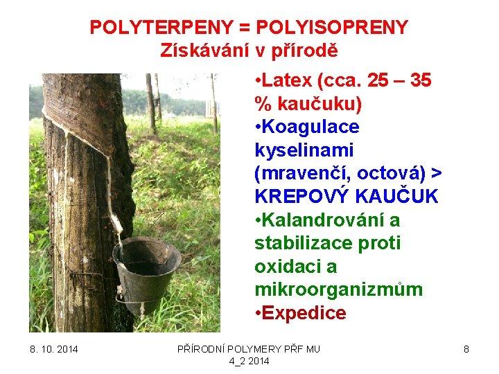 POLYTERPENY = POLYISOPRENY Získávání v přírodě • Latex (cca. 25 – 35 % kaučuku)
