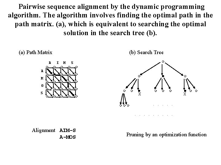Pairwise sequence alignment by the dynamic programming algorithm. The algorithm involves finding the optimal