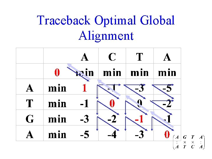 Traceback Optimal Global Alignment