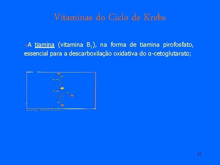 Vitaminas do Ciclo de Krebs øA tiamina (vitamina B 1), na forma de tiamina
