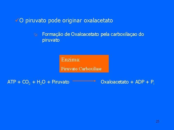 üO piruvato pode originar oxalacetato ø Formação de Oxaloacetato pela carboxilaçao do piruvato Enzima: