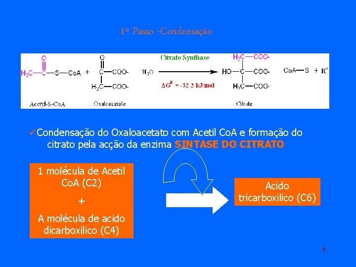 1º Passo -Condensação üCondensação do Oxaloacetato com Acetil Co. A e formação do citrato