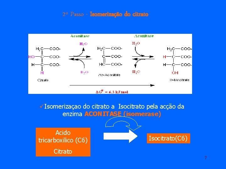 2º Passo - Isomerização do citrato üIsomerizaçao do citrato a Isocitrato pela acção da