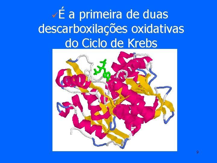 üÉ a primeira de duas descarboxilações oxidativas do Ciclo de Krebs 9