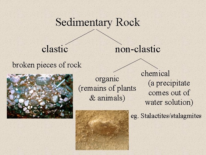 Sedimentary Rock clastic non-clastic broken pieces of rock chemical organic (a precipitate (remains of