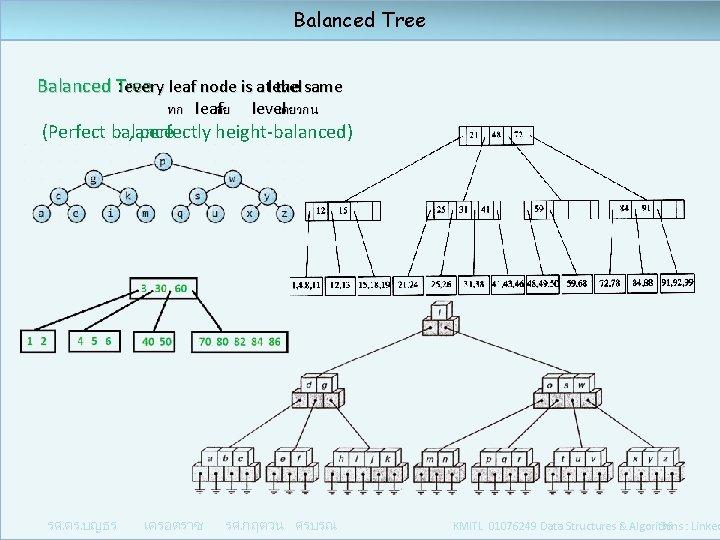 Balanced Tree : every leaf node is at the same level ทก leaf อย
