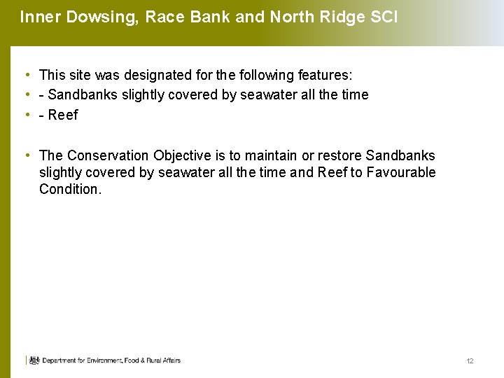 Inner Dowsing, Race Bank and North Ridge SCI • This site was designated for