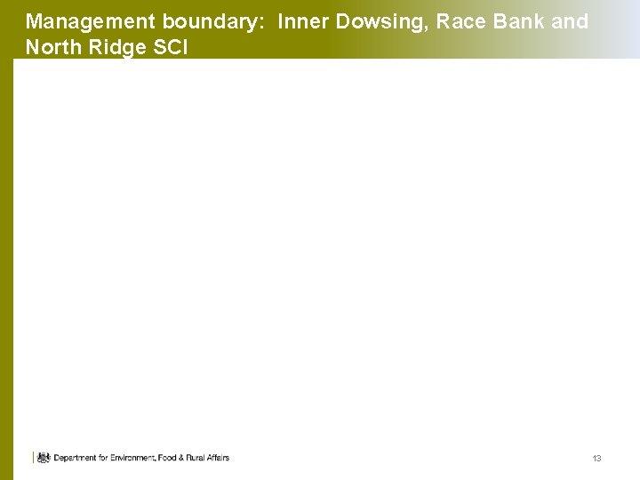 Management boundary: Inner Dowsing, Race Bank and North Ridge SCI 13