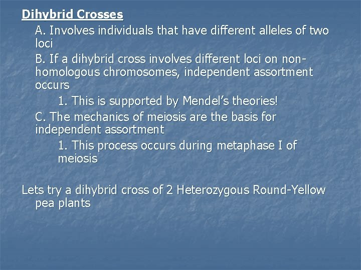 Dihybrid Crosses A. Involves individuals that have different alleles of two loci B. If