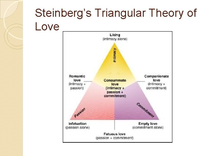 Sternberg robert of triangular the love theory Sternberg's Triangular