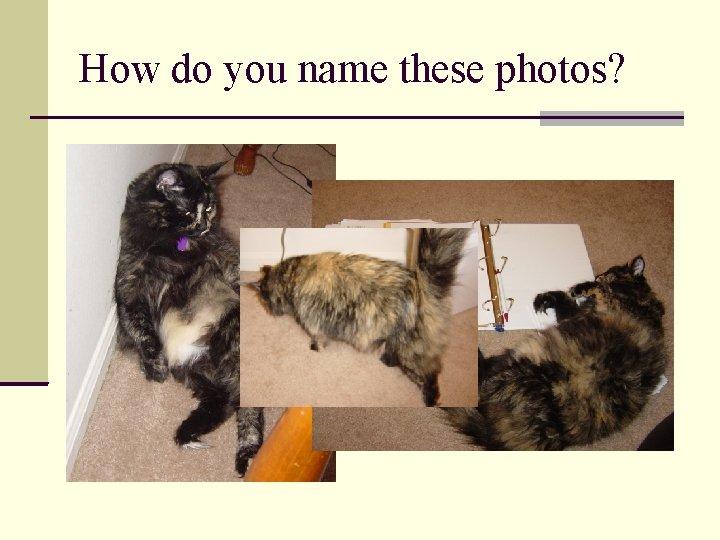 How do you name these photos?