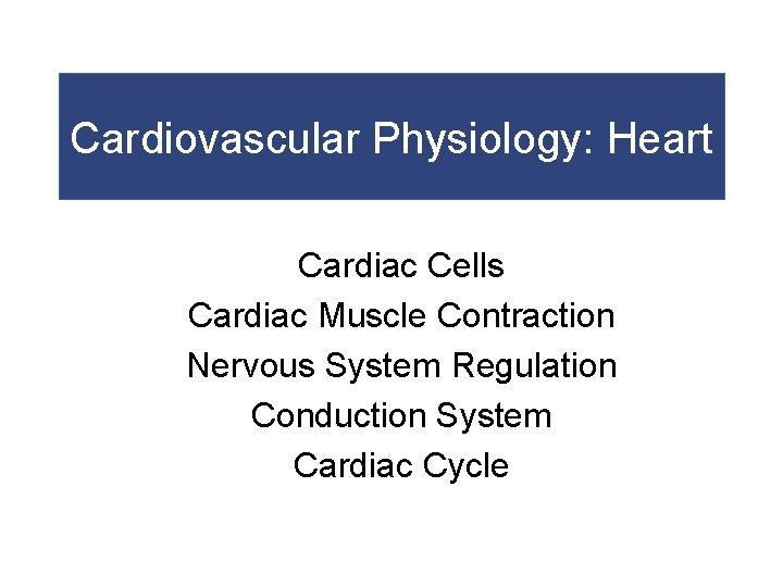 Cardiovascular Physiology: Heart Cardiac Cells Cardiac Muscle Contraction Nervous System Regulation Conduction System Cardiac