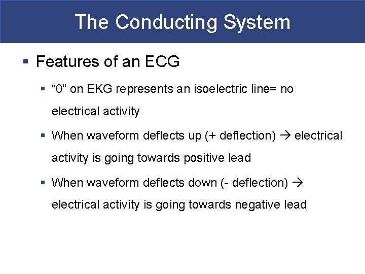"""The Conducting System § Features of an ECG § """" 0"""" on EKG represents"""