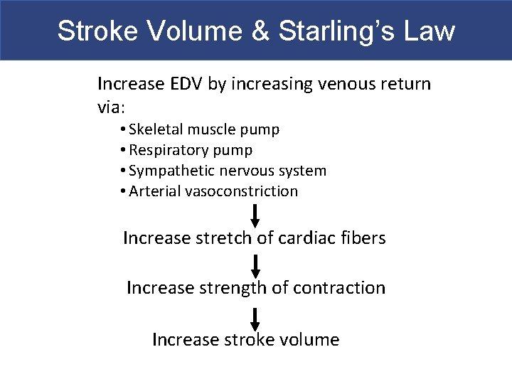 Stroke Volume & Starling's Law Increase EDV by increasing venous return via: • Skeletal