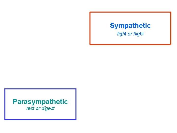 Sympathetic fight or flight Parasympathetic rest or digest