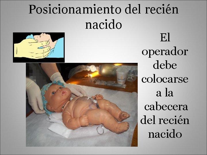 Posicionamiento del recién nacido El operador debe colocarse a la cabecera del recién nacido
