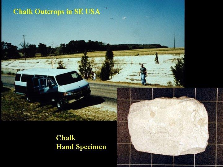 Chalk Outcrops in SE USA Chalk Hand Specimen