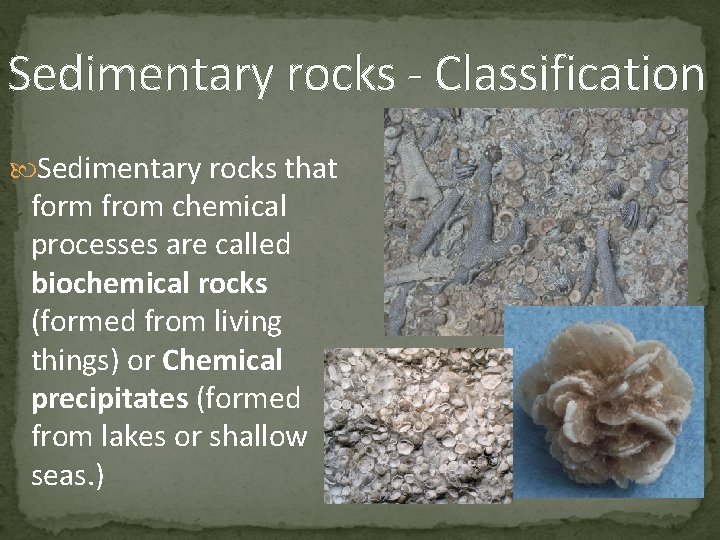 Sedimentary rocks - Classification Sedimentary rocks that form from chemical processes are called biochemical