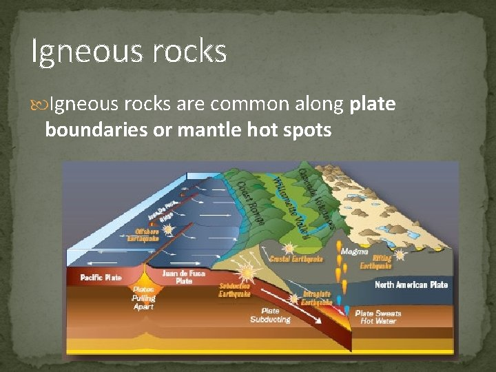 Igneous rocks are common along plate boundaries or mantle hot spots