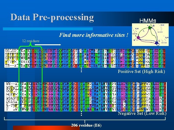 Data Pre-processing HMMs Find more informative sites ! 12 residues … Positive Set (High