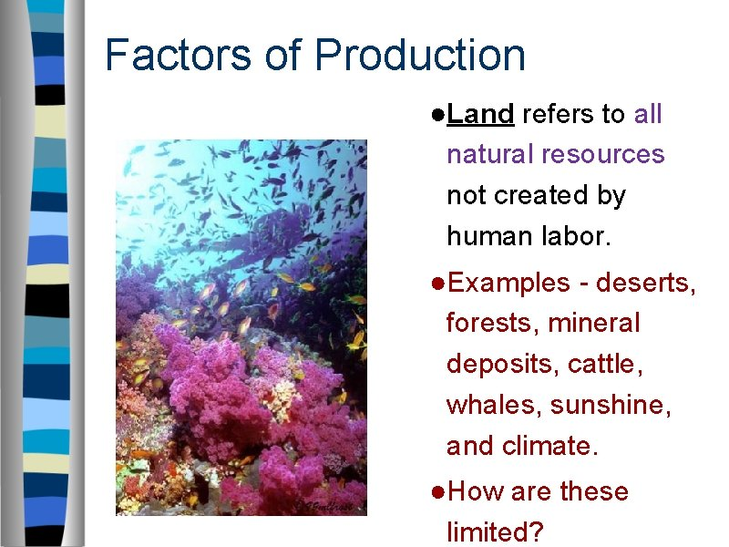 Factors of Production ●Land refers to all natural resources not created by human labor.