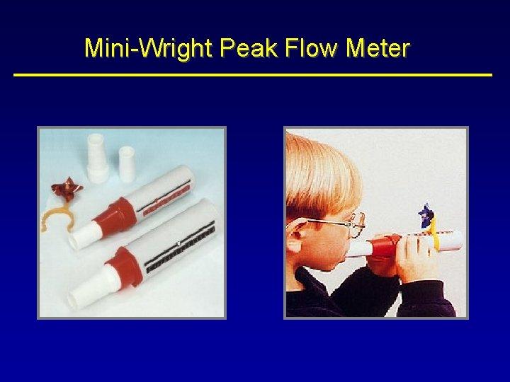 Mini-Wright Peak Flow Meter