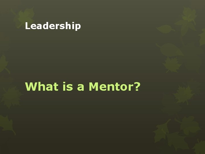 Leadership What is a Mentor?