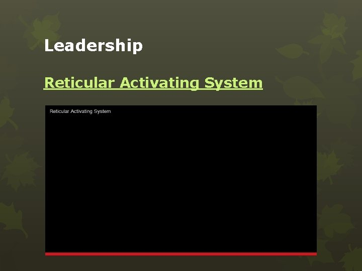 Leadership Reticular Activating System