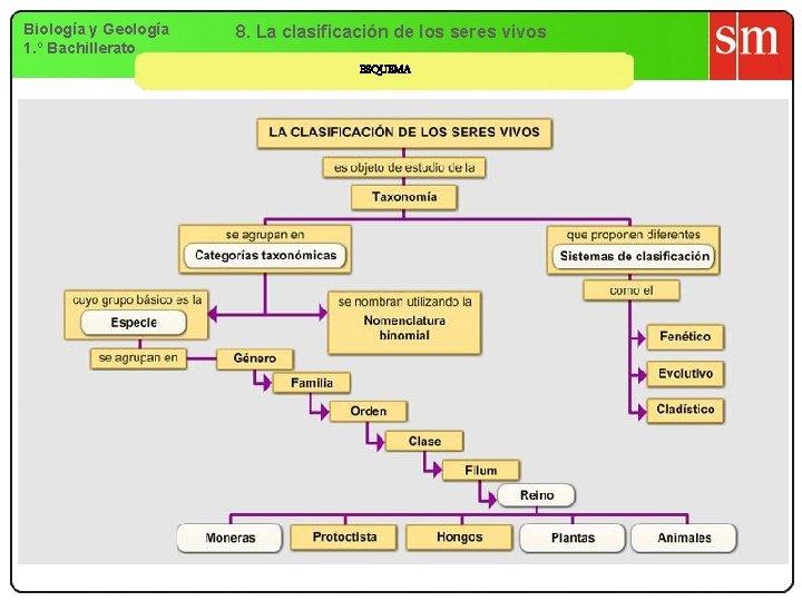 Biología y Geología 1. º Bachillerato 8. La clasificación de los seres vivos ESQUEMA