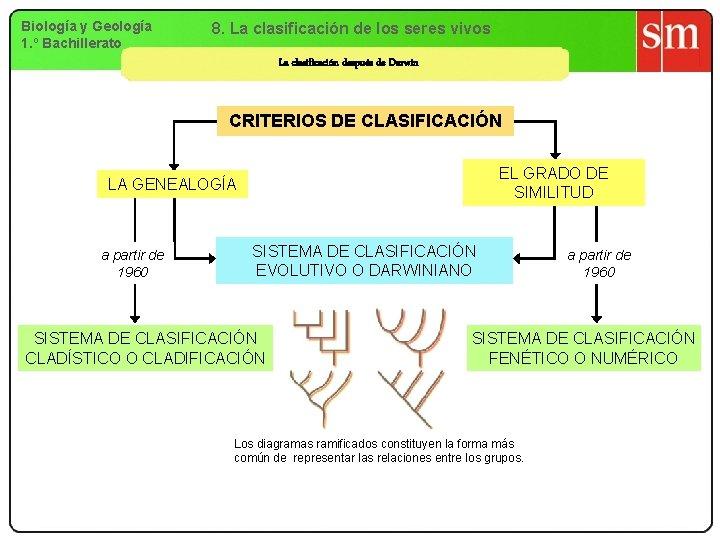 Biología y Geología 1. º Bachillerato 8. La clasificación de los seres vivos La