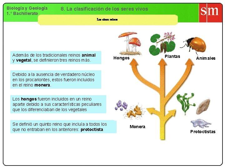 Biología y Geología 1. º Bachillerato 8. La clasificación de los seres vivos Los