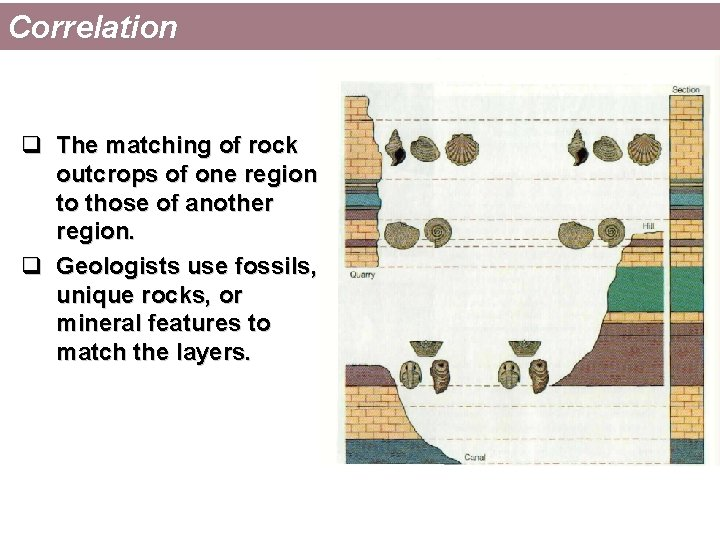 Correlation q The matching of rock outcrops of one region to those of another
