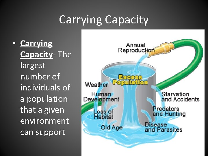 Carrying Capacity • Carrying Capacity- The largest number of individuals of a population that
