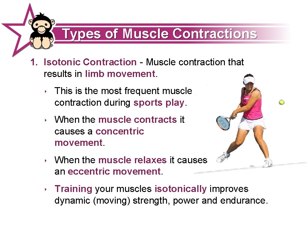 Types of Muscle Contractions 1. Isotonic Contraction - Muscle contraction that results in limb