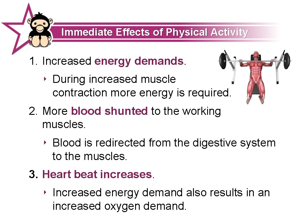 Immediate Effects of Physical Activity 1. Increased energy demands. ‣ During increased muscle contraction
