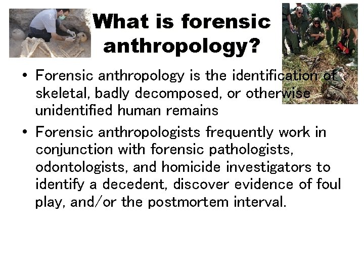 What is forensic anthropology? • Forensic anthropology is the identification of skeletal, badly decomposed,