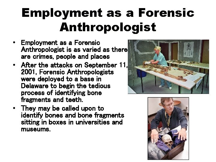 Employment as a Forensic Anthropologist • Employment as a Forensic Anthropologist is as varied