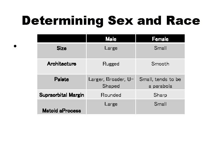 Determining Sex and Race • Male Female Size Large Small Architecture Rugged Smooth Palate