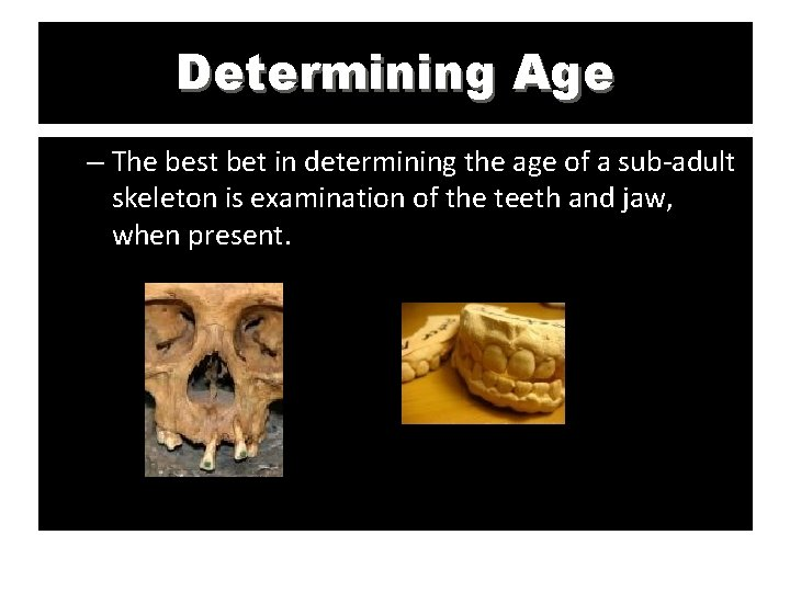 Determining Age – The best bet in determining the age of a sub-adult skeleton
