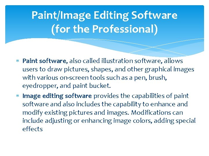 Paint/Image Editing Software (for the Professional) Paint software, also called illustration software, allows users
