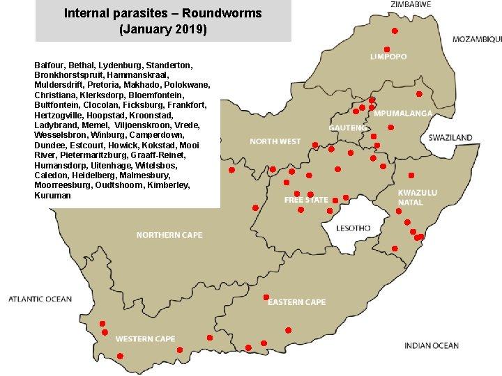 Internal parasites – Roundworms (January 2019) Balfour, Bethal, Lydenburg, Standerton, Bronkhorstspruit, Hammanskraal, Muldersdrift, Pretoria,