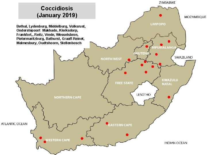 Coccidiosis (January 2019) Bethal, Lydenburg, Middelburg, Volksrust, Onderstepoort Makhado, Klerksdorp, Frankfort, , Reitz, Vrede,