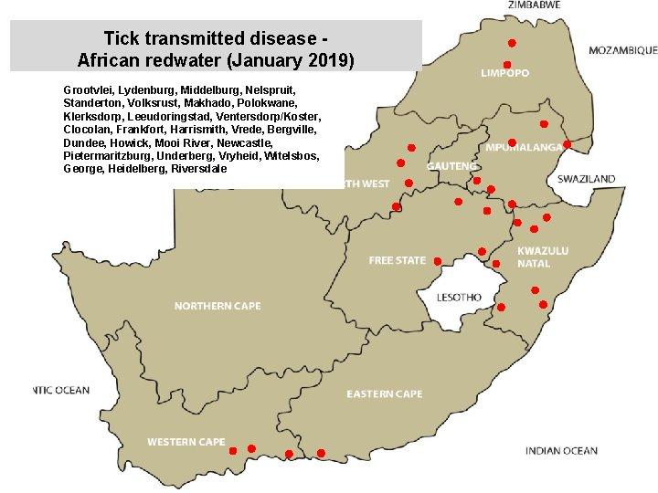 Tick transmitted disease African redwater (January 2019) Grootvlei, Lydenburg, Middelburg, Nelspruit, Standerton, Volksrust, Makhado,