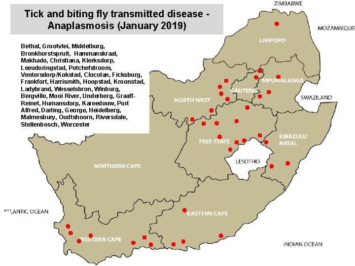Tick and biting fly transmitted disease Anaplasmosis (January 2019) Bethal, Grootvlei, Middelburg, Bronkhorstspruit, Hammanskraal,