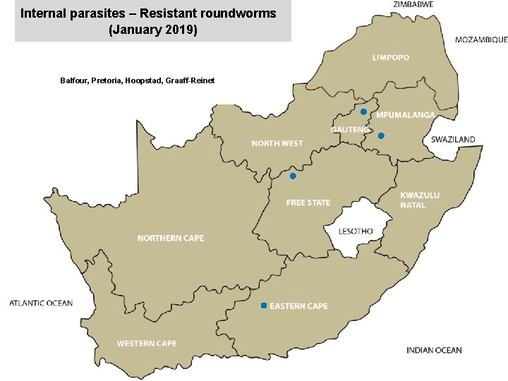 Internal parasites – Resistant roundworms (January 2019) jkccff Balfour, Pretoria, Hoopstad, Graaff-Reinet x