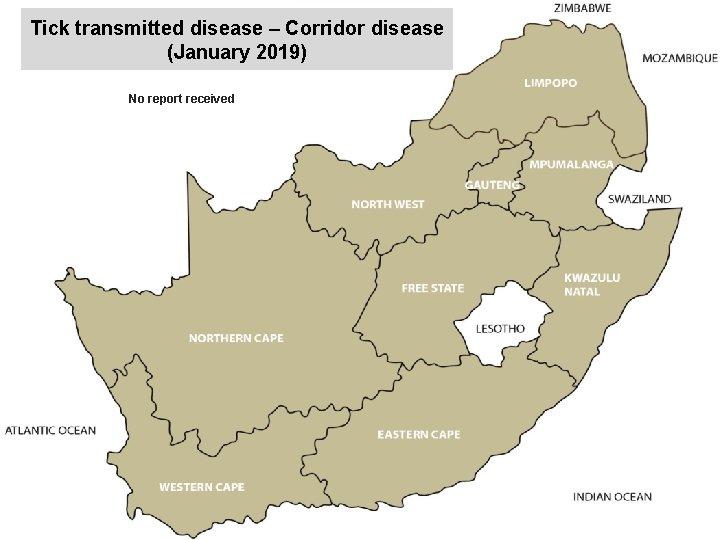 Tick transmitted disease – Corridor disease (January 2019) No report received